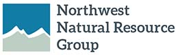NNRG logo